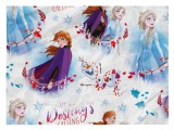 Papier do pakowania Disney Y040 (Frozen) 100x70 LUX